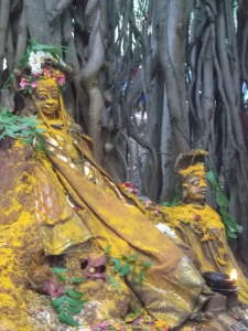 Shrine in the roots of the Banyan tree decorated for the Festival